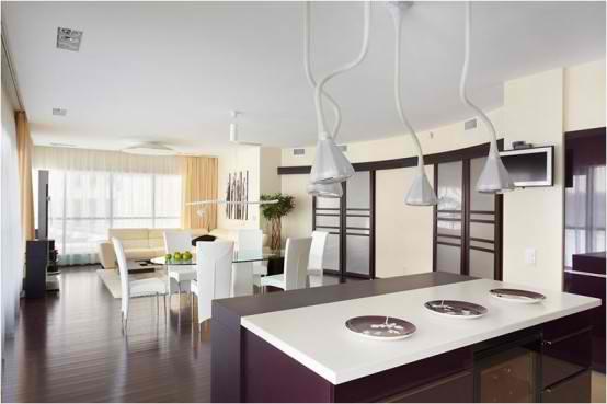 Apartment Interior Design With Wood Floors, kitchen