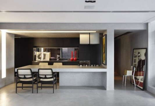 Contemporary Duplex Penthouse Interior redesign minimalist kitchen design