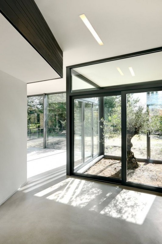 Contemporary Garden Residence transparent glass windows