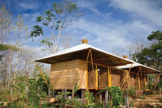 a Forest for a Moon Dazzler home design