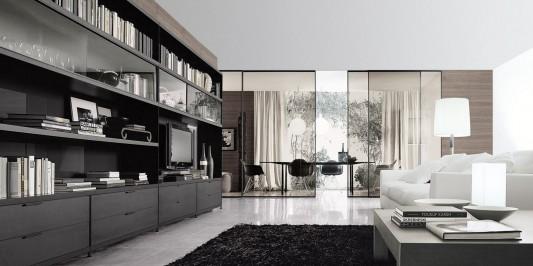 Elegant Minimalist Living Room Library Bookcase With TV Unit