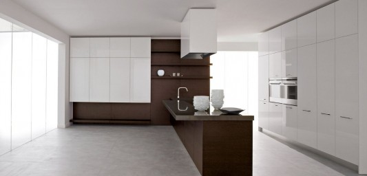 lacquered white and wood kitchen combination design