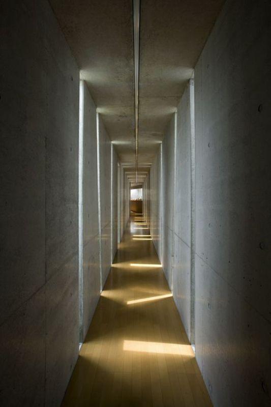 light entering through the cracks of the slit house