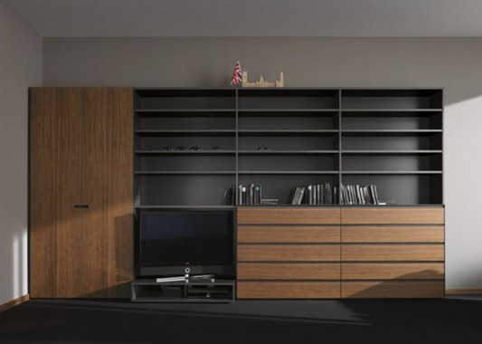 minimalist wardrobes system with cabinet display