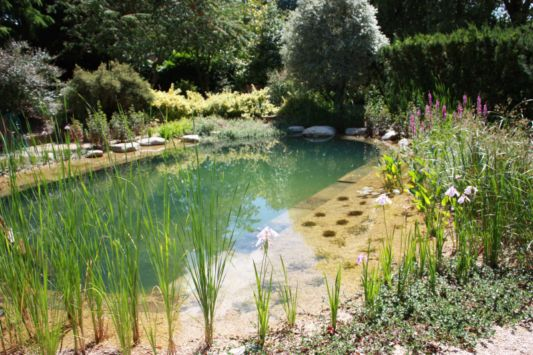 natural swimming pool with rocks and soil