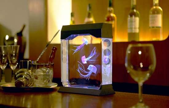small aquarium design for table