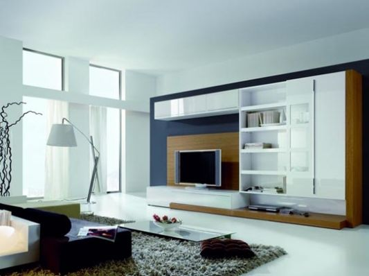 wall unit contemporary design